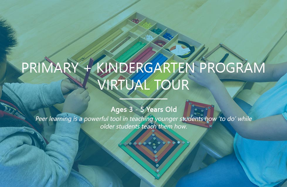 VirtualTour-Primary1